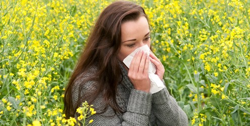 allergy prevention through chiropractic care