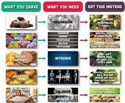 food-you-should-eat