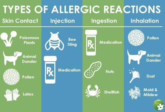 Can You Cure Food Allergies